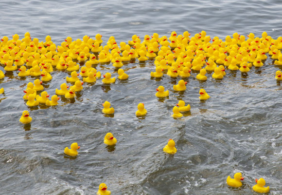 2018 Rubber Ducky Regatta